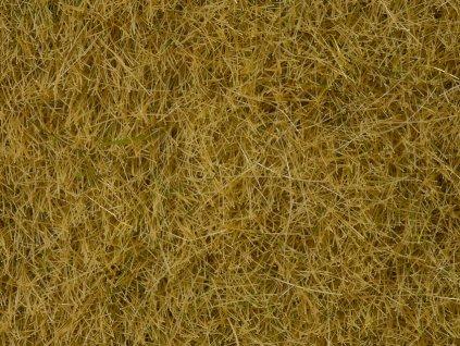 Divoká tráva - béžová statická BOX 100g, 6 mm, dóza / NOCH 07091