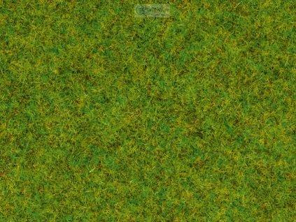 tráva jarní louka BOX 120g 2,5 mm, dóza/ NOCH 08150