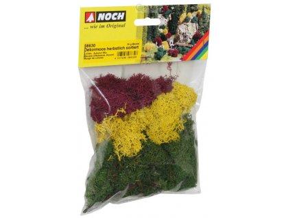 Mech - podzimní, barevný / NOCH 08630