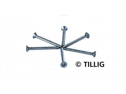 TT - Mini vruty do dřeva 100ks/ TILLIG 08976