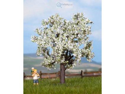Třešeň kvetoucí - 7,5cm / NOCH 25950_2