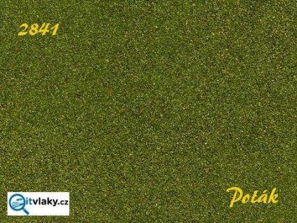 Naturex F - jemný - Zelená střední / Polák model 2841