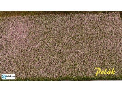 Pole - makové, kvetoucí / Polák Model 5823