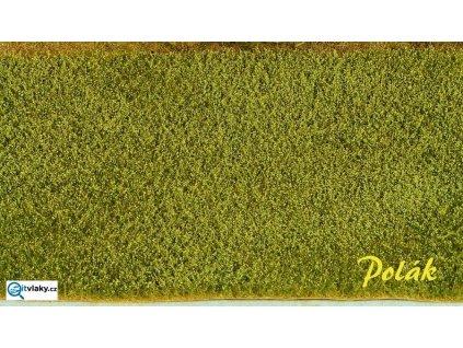 Makové pole  - zelené makovice / Polák model 5825