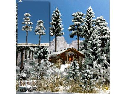370114 h0 2 zasnezene borovice busch 6155