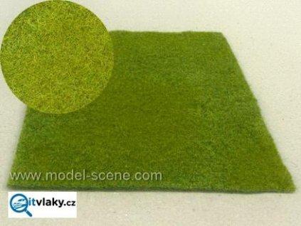 Sečená louka jarní / Model Scene F001