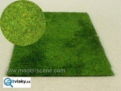 Sečená louka letní / Model Scene F002