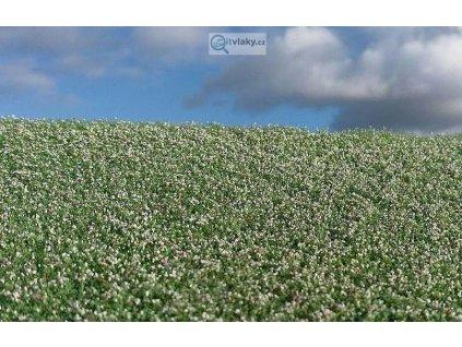 Makové pole kvetoucí / Model Scene F460