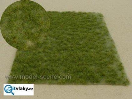 Drny střední / Model Scene F514