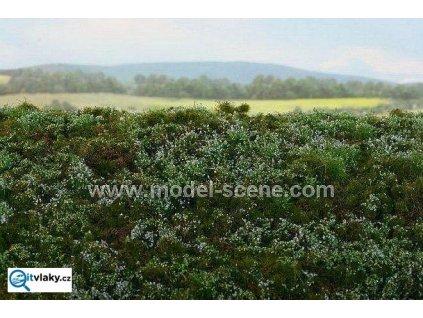 Lesní podrosty - Borůvkoviště / Model Scene F620