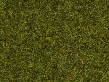 439043 travni posyp louka 9 mm vyska 50g noch 07117