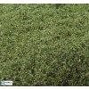 Naturex - mikro - zelená vrbová / Polák model 9052