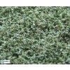 Naturex - jemný - zelená vrbová / Polák model 9062