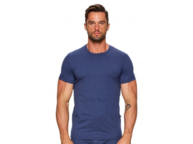 Pánské jednobarevné tričko se vzorem melíru 06 Fabio