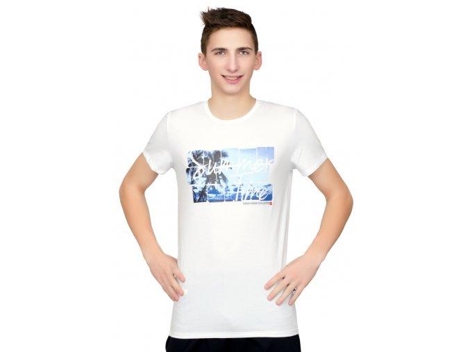 Pánské tričko s obrázkem palmy Fabio