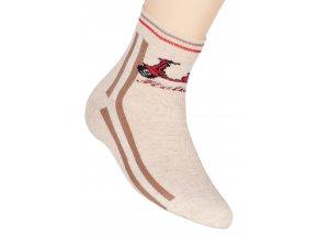 Chlapecké klasické ponožky s nápisem Holiday 014/75 Steven
