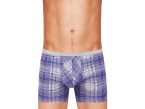 Pánské boxerky s delší nohavičkou a vzorem široké kostky 439 Fabio