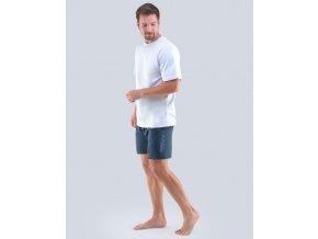 Pyžamo krátke pánske 79102P