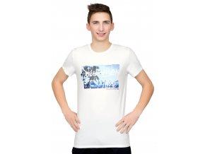 Pánske tričko s obrázkom palmy Fabio