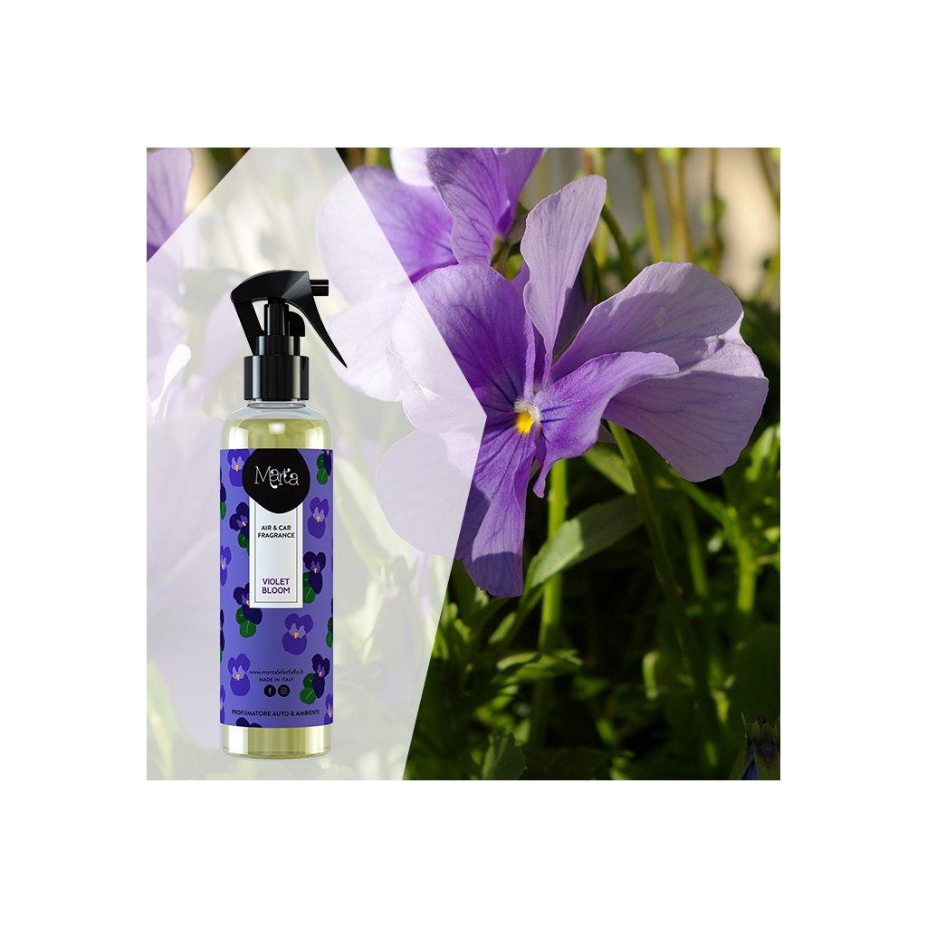 Marta la Farfalla violet bloom