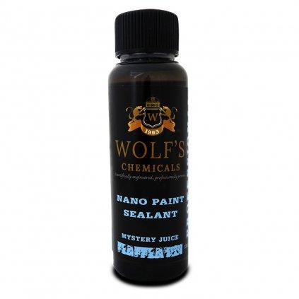 Nano Paint Sealant