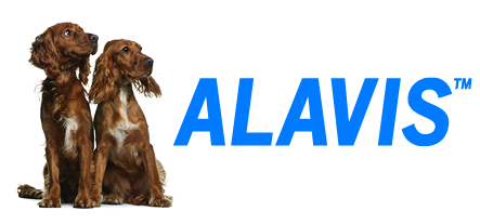 alavis_banner_75x35