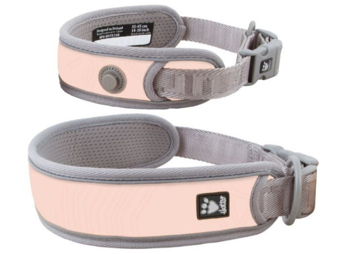 adventure collar trout01