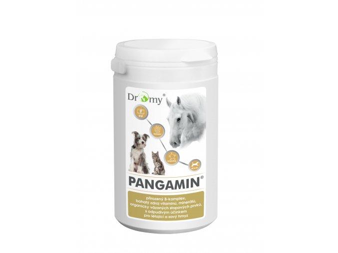 PANGAMIN II