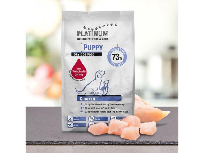 platinum puppy 1,5