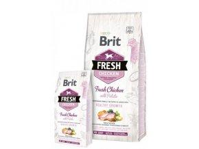 brit fresh05JPG