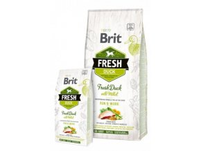 brit fresh02
