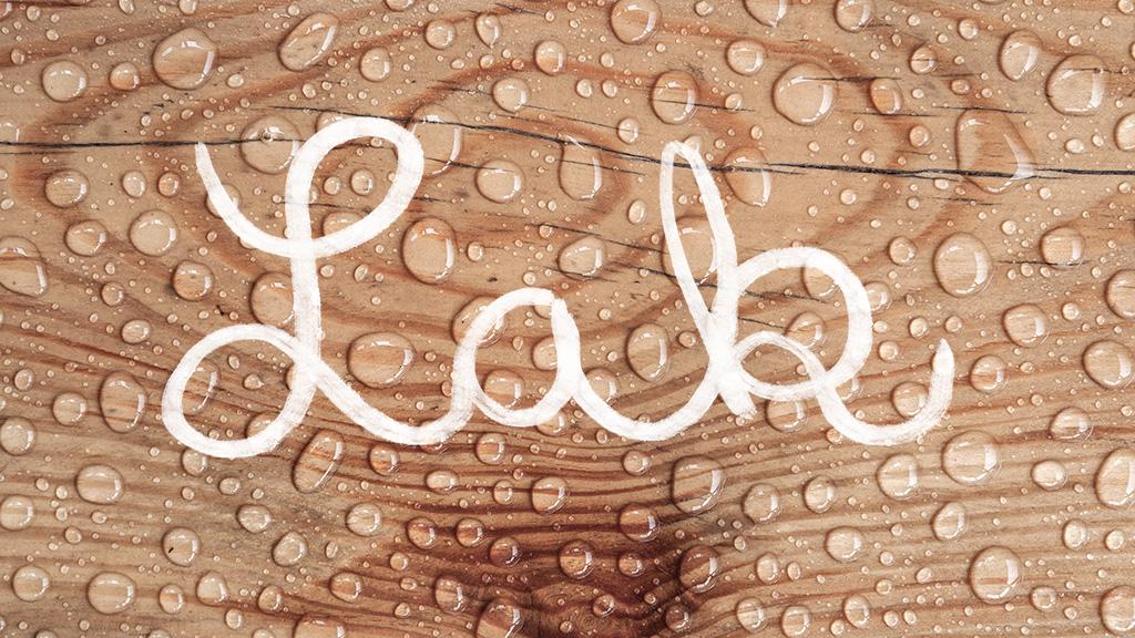 Blog_jak-pecovat-o-drevo-lak