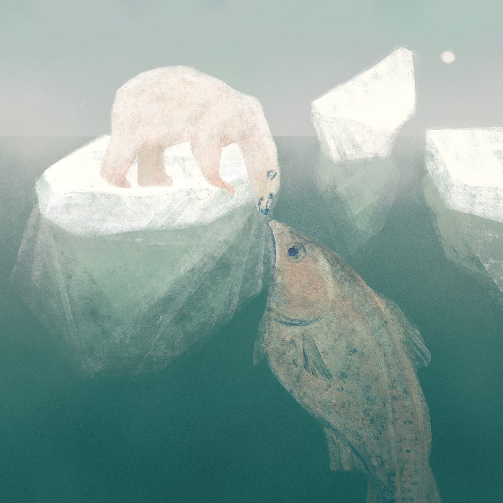 vodavodenka_ledni-medved_ryba