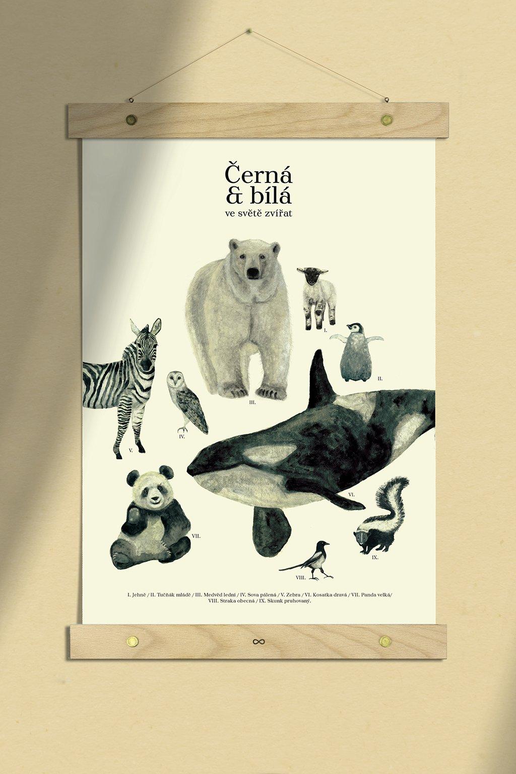 JAATY_detsky-autorsky-plakat-cernobila-zviratka