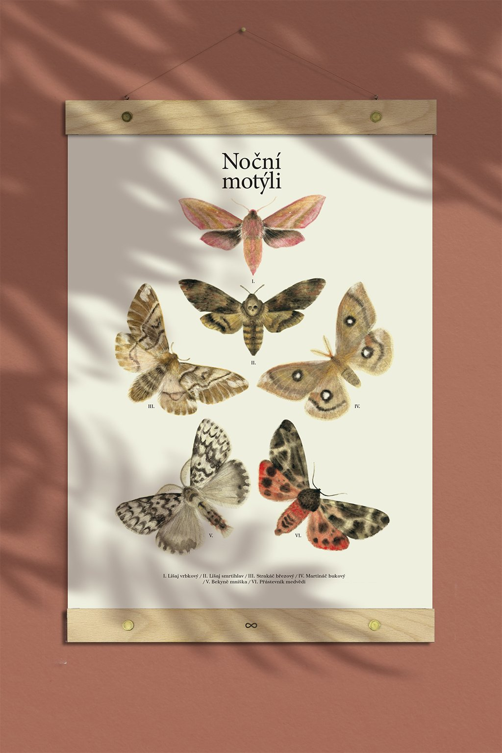 JAATY_autorsky-plakat-nocni-motyli-mury