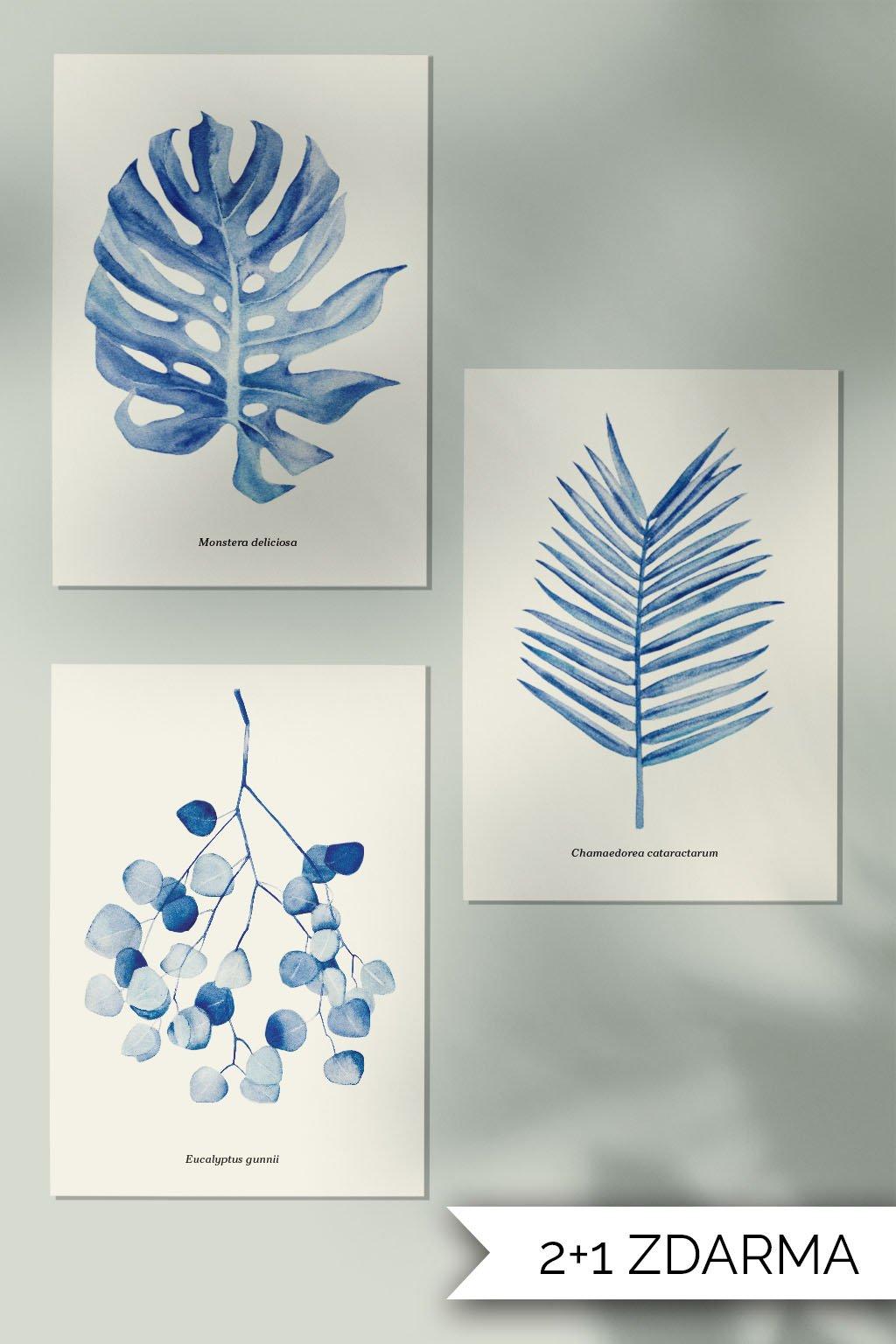 JAATY_A4_autorsky-plakat-akvarel-pokojovky