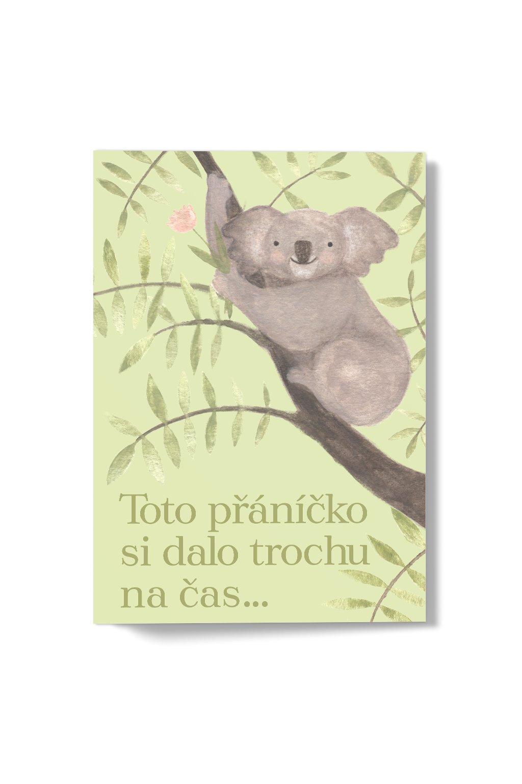 JAATY_roztomile-univerzalni-pranicko-pro-zapometlivce-koala-lenochod