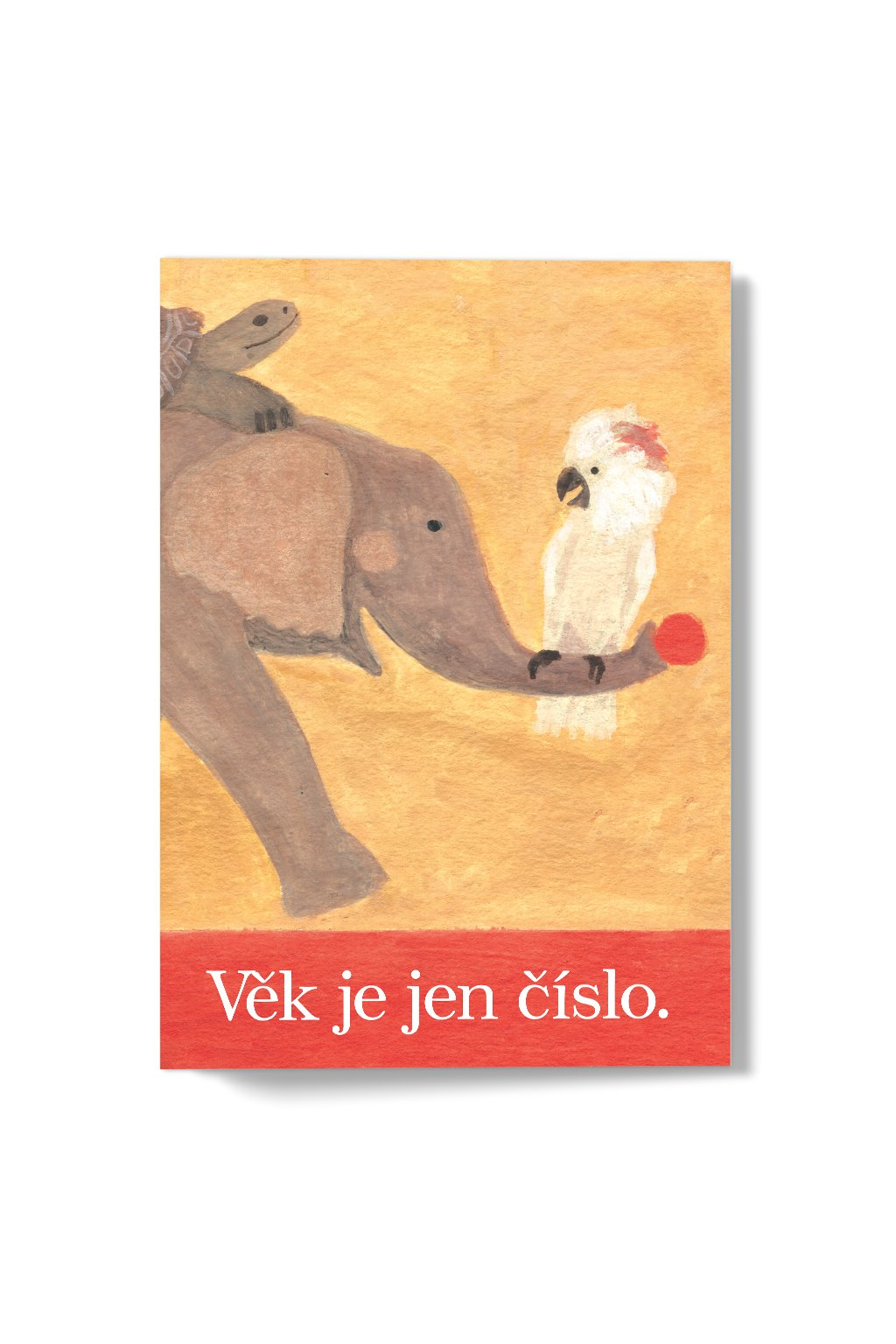 JAATY_narozeninove-pranicko_vek-je-jen-cislo-slon