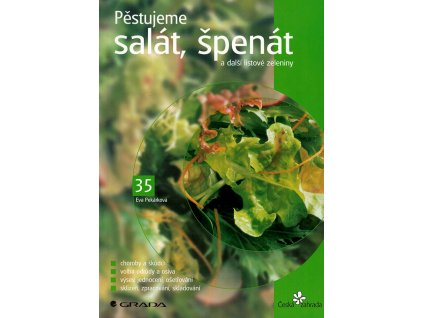 Pestujeme salat spenat v800