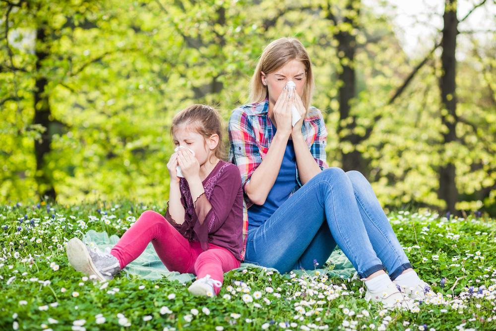 Jak bojovat proti alergiím?