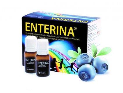 171011 enterina2