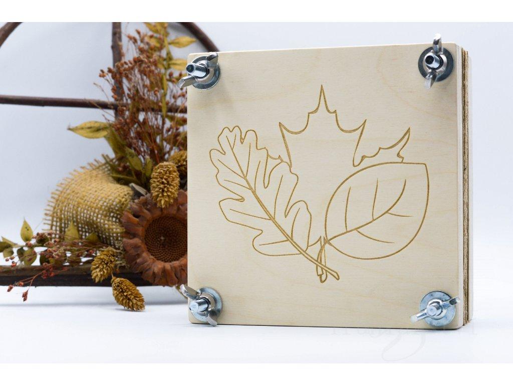 lis na květiny listy, herbář