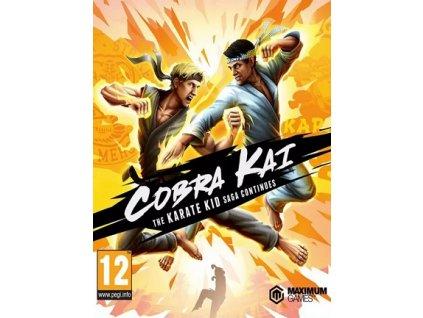 Cobra Kai: The Karate Kid Saga Continues (PC) Steam Key