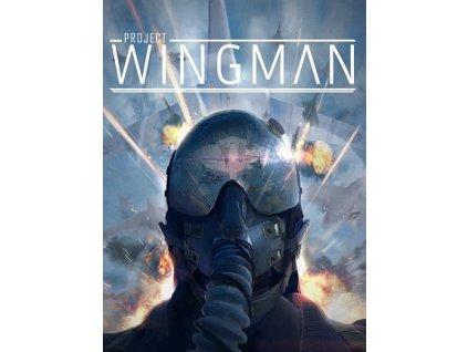 Project Wingman (PC) Steam Key