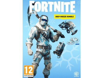 SWITCH Fortnite Deep Freeze Bundle Nintendo Key