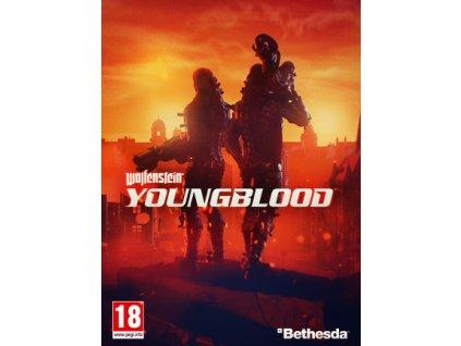 Wolfenstein: Youngblood Standard Edition (PC) Steam Key