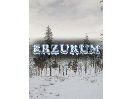 Erzurum (PC) Steam Key
