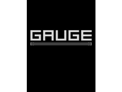GAUGE (PC) Steam Key