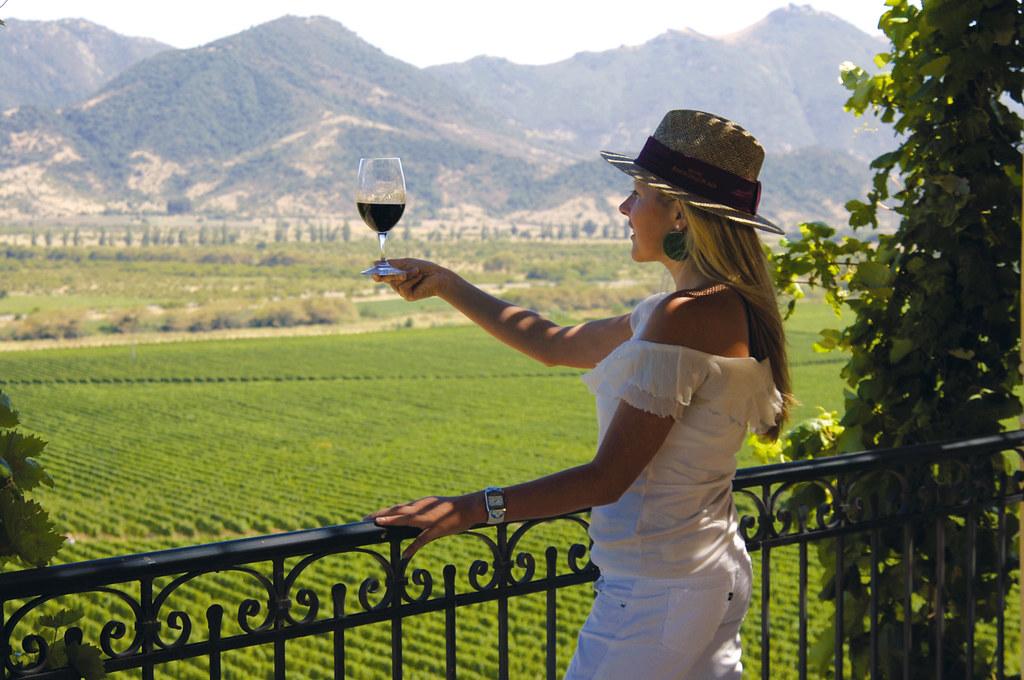Víno je umění