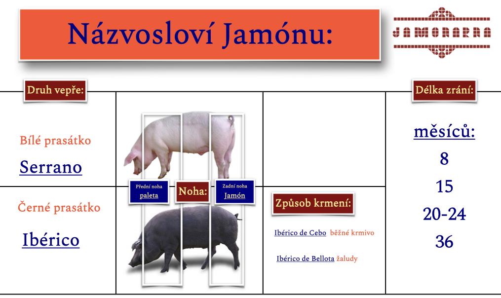 Názvosloví_jamonu